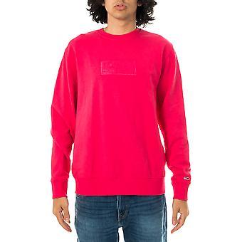 Tommy jeans tjm tonal corp sweatshirt nlogo crew dm0dm10200.t1k