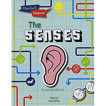 The Senses by Louise Spilsbury - 9781474765824 Book