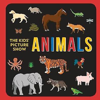 Animals by Chieri DeGregorio - 9781524790745 Book