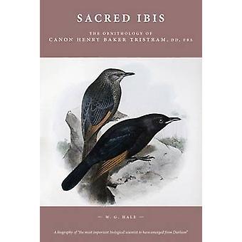 Sacred Ibis - The Ornithology of Canon Henry Baker Tristram - DD - FRS