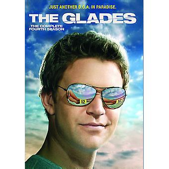 Glades: The Complete Fourth Season [DVD] USA import