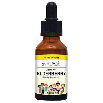 Eclectic Institute Inc Elderberry with Vitamin C, 1 Oz Alcohol free