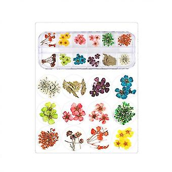 Acessórios de nail art flores secas coloridos life nail flower stickers (12 cor)(Cor C)