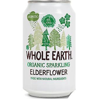 Whole Earth Organic Czarny Napój z Czarnego Bzu 330ml x24