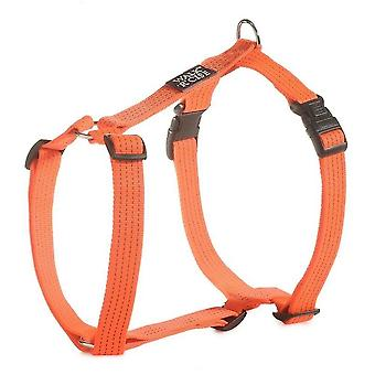 Pet collars harnesses walk 'r' cise reflective harness large 65-10