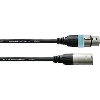 Cordial CCM2,5FM XLR Kabel [1x XLR-Buchse - 1x XLR Stecker] 2,50 m Schwarz