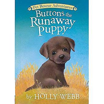 Boutons le chiot Runaway (aventures de sauvetage pour animaux de compagnie)