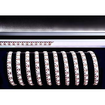 Pasek LED elastyczny 5050-72-12V 38W 6000K 3m B 10mm wybieralna ściemniana miedź IP33