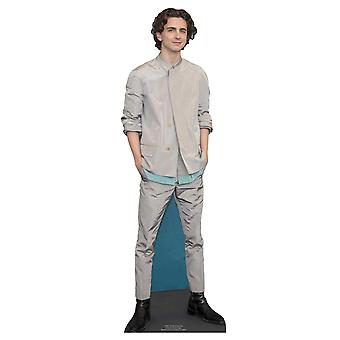 Timothee Chalamet Grey Outfit Mini Cardboard Cutout / Standee