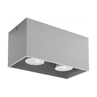Quad Ceiling Light Gray Aluminium 2 Ampoules