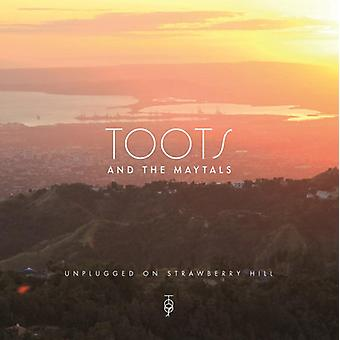 Toots & Maytals - Unplugged on Strawberry Hill [Vinyl] USA import