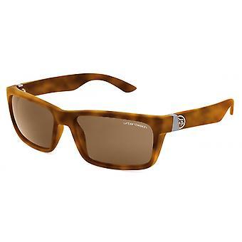 Sunglasses Men's Brown/Brown