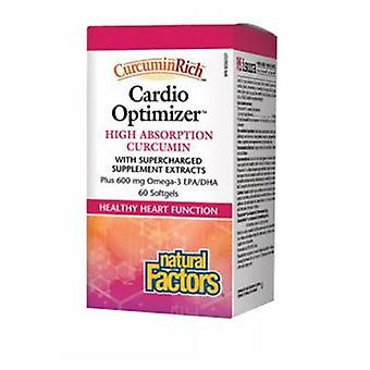 Natural Factors CurcuminRich & Cardio Curcumizer, 60 Softgels