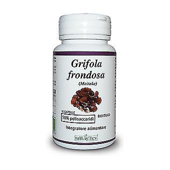 Bio Maitake Leafy Grifola 60 capsules of 718mg