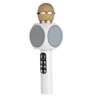 Ammattimainen langaton bluetooth mikrofoni kaiutin kädessä pidettävä mikrofoni karaoke mic musiikkisoitin laulaa tallennin ktv mikrofoni