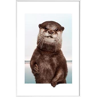 JUNIQE Print - OTTER - Marine Animals Affisch i brunt