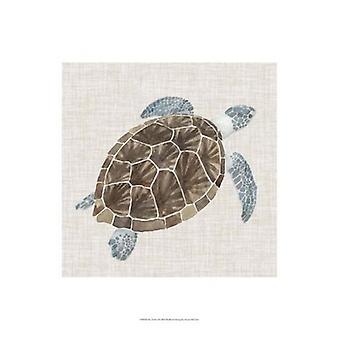 Sea Turtle I Poster Print by Naomi McCavitt (13 x 19)