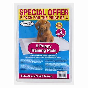 5 elettrodi da addestramento del cucciolo