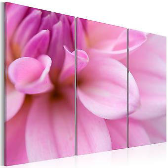 Tableau - Dahlia rose