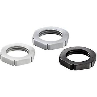 Wiska MUG PG11 RAL 7035 Locknut PG11 Polyamide Light grey 1 pc(s)