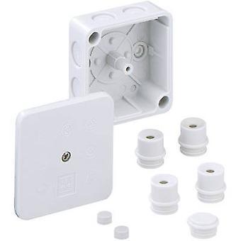 ה40290701 בקופסא המשותפת (L x W x H) 80 x 80 x 38 mm אפור IP54