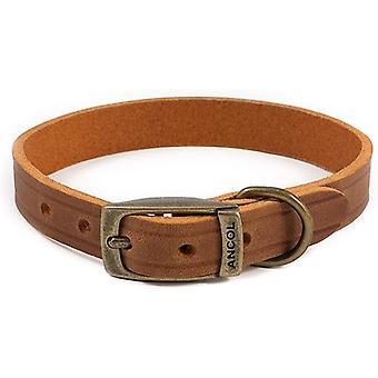 Ancol Heritage Latigo Leather Collar - Chestnut - 19mm x 35-43cm (Size 4)