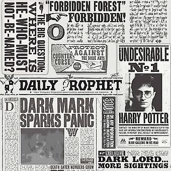 HARRY POTTER DAILY PROPHET MONO WALLPAPER