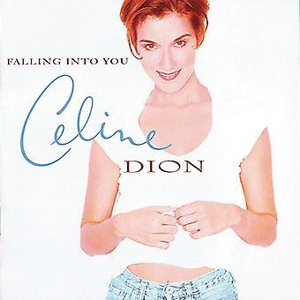 Celine Dion - Falling Into You Vinyl