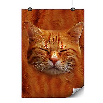 Matte or Glossy Poster with Sleepy Animal Kitten Cat | Wellcoda | *y2079