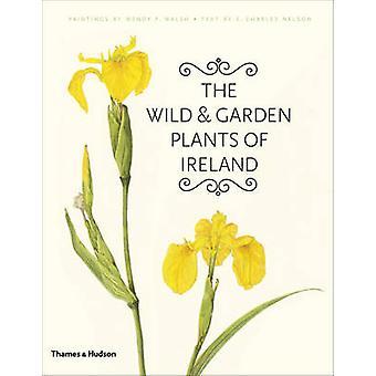 The Wild and Garden Plants of Ireland von Wendy F. Walsh-E. Charles