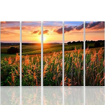 Five Part Picture On Canvas, Pentaptych, Type C, Sunset Over The Fields