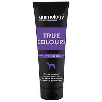 Animology Champu Colores (Dogs , Grooming & Wellbeing , Shampoos)