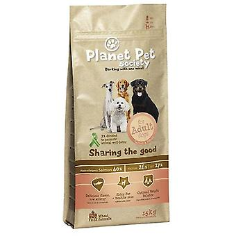 Planet Pet Pienso para Perros Adultos de Salmón (Dogs , Dog Food , Dry Food)