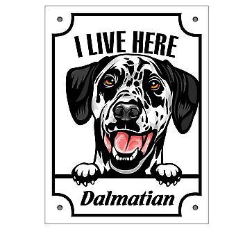 Plaque d'étain Dalmatiner Kikande chien signe anglais