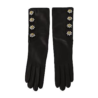 Dolce & Gabbana Black Lambskin Leather Crystal Elbow Gloves -- LB27214896