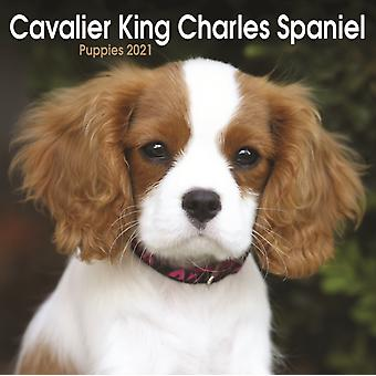 Cavalier King Charles Spaniel Puppies Mini Square Wall Calendar 2021