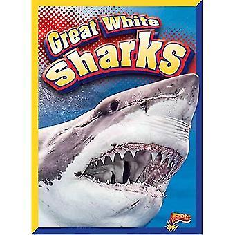 Veľké biele žraloky