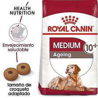 Royal Canin Medium Ageing 10+ Pienso Perro en Edad Avanzada Tamaño Mediano