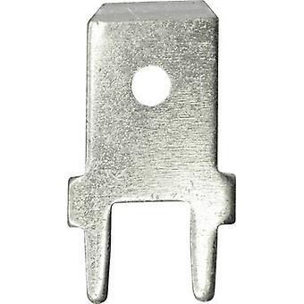 Vogt Verbindungstechnik 3866b.68 Klinge Connector Stecker Breite: 6,3 mm 180° nicht isoliert Metall 100 PC