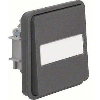 Berker Switch W.1 (surface-mounted) Grey, Light grey 50763555