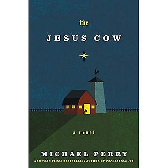 A vaca de Jesus