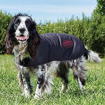 Revestimento encerado anissex weatherbeeta do cão