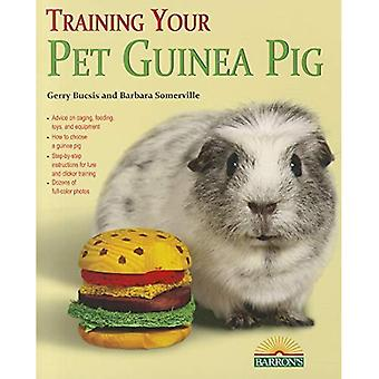 Training Your Guinea Pig (Training Your Pet)