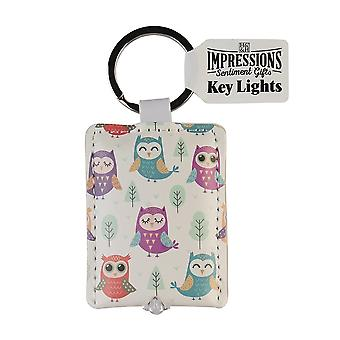 History & Heraldry Keyring - Owls Key Light