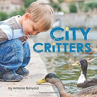 City Critters by Antonia Banyard - 9781773210759 Book