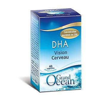 DHA 40 capsules