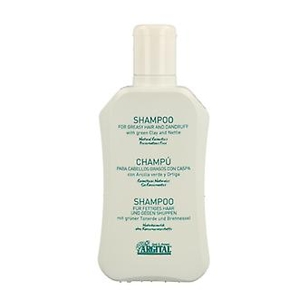 Shampoo with green clay and nettle 250 ml