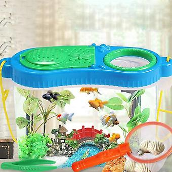 Early Childhood Education Experimental Research Plastic Tool Box - Insect