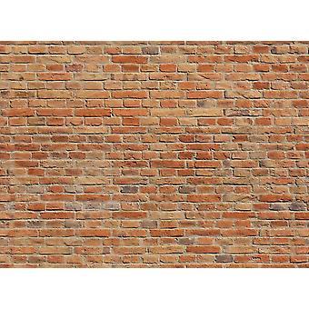 Fondo de pantalla Mural Brickwall II