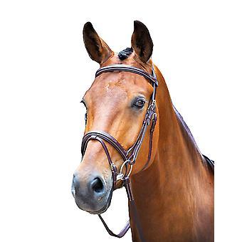 Salisbury Bodenham læder hest tøjle